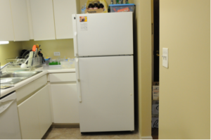Can I Replace RV Refrigerator With a Residential Refrigerator?